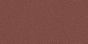 S054 LeatherS054